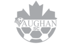 featured-client-vaughan-azzurri-soccer-club